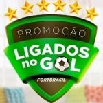 www.fortbrasil.com.br/promocao-ligados-no-gol, Promoção Cartão Fortbrasil Ligados no Gol