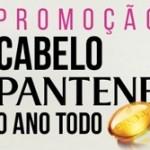 www.descubrapg.com.br/panteneoanotodo, Promoção Pantene o ano todo