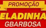 geladinhasgbarbosa.com.br, Promoção Geladinhas Skol GBarbosa