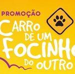 www.promosache.com.br, Promoção Sachê – Pedigree e Whiskas 2019