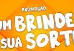 www.promocaomioranza.com.br, Promoção Vinhos Mioranza 2019